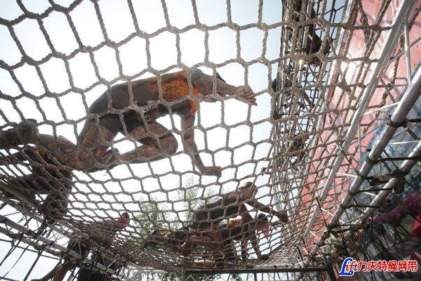 Traverse Cargo Nets